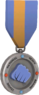 BLU Tournament Medal - National Heavy Boxing League 2nd Place.png