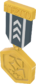 Painted Tournament Medal - TF2Connexion 384248.png
