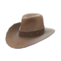Backpack Hat With No Name.png