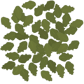 Frontline birch groundleaves 4 large.png