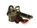 Item icon The Hibernating Bear.png
