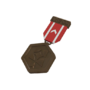 Backpack Tournament Medal - TF2Connexion Third Place.png