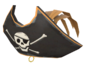 Painted Buccaneer's Bicorne A57545.png