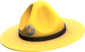 Painted Sergeant's Drill Hat E7B53B.png