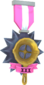 Painted Tournament Medal - Ready Steady Pan FF69B4 Ready Steady Pan Helper Season 3.png