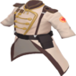 Painted Colonel's Coat 694D3A.png