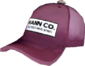 Painted Mann Co. Cap 7D4071.png