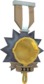 Painted Tournament Medal - Ready Steady Pan 7C6C57 Ready Steady Pan Panticipant.png