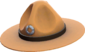 Painted Sergeant's Drill Hat A57545.png