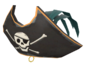Painted Buccaneer's Bicorne 2F4F4F.png
