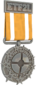 Painted Tournament Medal - ETF2L 6v6 B88035 Participant.png