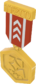 Painted Tournament Medal - TF2Connexion 803020.png