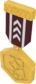 Painted Tournament Medal - TF2Connexion 3B1F23.png