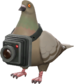 Painted Bird's Eye Viewer 7C6C57.png