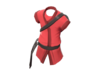 Item icon Southie Shinobi.png