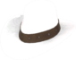 Painted Hat With No Name E6E6E6.png