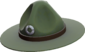 Painted Sergeant's Drill Hat 424F3B.png