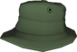 Painted Summer Hat 424F3B.png