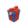 Backpack A Carefully Wrapped Gift.png