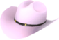 Painted Texas Ten Gallon D8BED8.png