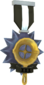 Painted Tournament Medal - Ready Steady Pan 2D2D24 Ready Steady Pan Helper Season 3.png
