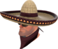 Painted Wide-Brimmed Bandito 3B1F23.png