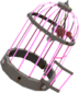 Painted Bolted Birdcage FF69B4.png