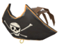 Painted Buccaneer's Bicorne 694D3A.png