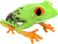 Painted Croaking Hazard 7E7E7E.png