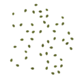 Frontline groundleaves scatter.png