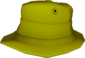 Painted Summer Hat 808000.png