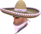 Painted Wide-Brimmed Bandito D8BED8.png
