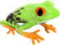 Painted Croaking Hazard 654740.png