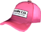 Painted Mann Co. Cap FF69B4.png