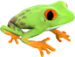 Painted Croaking Hazard F0E68C.png