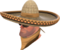 Painted Wide-Brimmed Bandito A57545.png