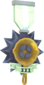 Painted Tournament Medal - Ready Steady Pan BCDDB3 Ready Steady Pan Helper Season 3.png
