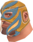 Painted Large Luchadore B88035.png