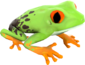 Painted Croaking Hazard 7C6C57.png