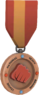RED Tournament Medal - National Heavy Boxing League Participant.png