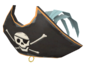 Painted Buccaneer's Bicorne 839FA3.png