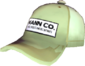 Painted Mann Co. Cap BCDDB3.png