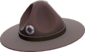 Painted Sergeant's Drill Hat 483838.png