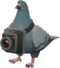 RED Bird's Eye Viewer.png