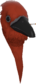Painted Avian Amante 803020.png