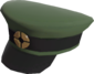 Painted Wiki Cap 424F3B.png