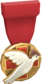 RED Tournament Medal - Heals for Reals Donor Medal.png