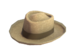 Item icon Professional's Panama.png