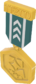 Painted Tournament Medal - TF2Connexion 2F4F4F.png