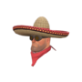 Backpack Wide-Brimmed Bandito.png